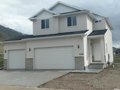 Tooele County Single Family Home For Sale: 2046 E Rich Rock Rd #638