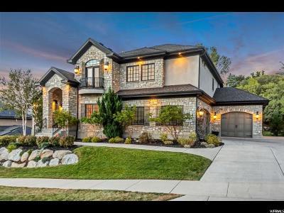 Sandy Single Family Home For Sale: 3063 E Hiddenwood Dr S