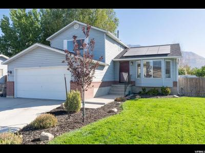 Pleasant Grove Single Family Home For Sale: 614 N 1370 W