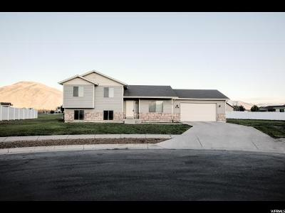 Nibley Single Family Home For Sale: 3356 S 1416 W