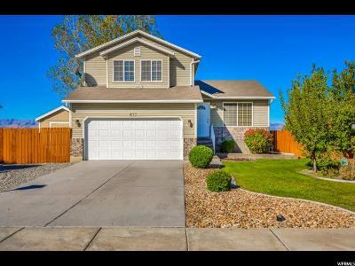 Tooele Single Family Home For Sale: 877 N 310 E