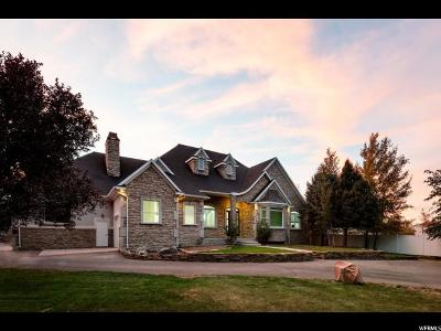 South Jordan Single Family Home For Sale: 2737 W 9850 S