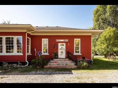 Cache County Single Family Home For Sale: 180 N Main St