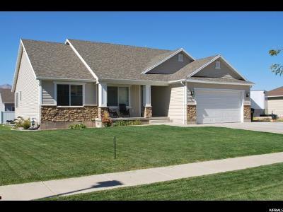 Hyrum Single Family Home For Sale: 236 S 1130 E