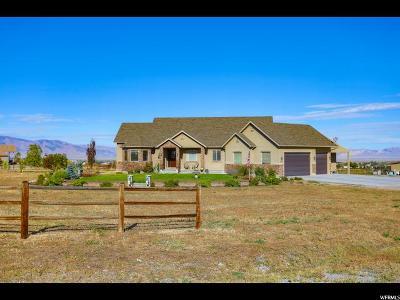 Erda Single Family Home For Sale: 2915 N Bronzewood Cir