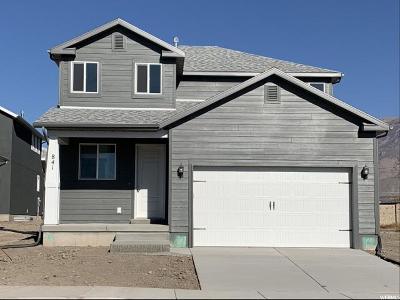 American Fork Single Family Home For Sale: 841 E 380 S