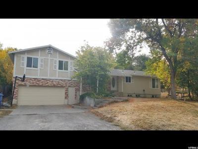 Providence Single Family Home For Sale: 126 S 100 E