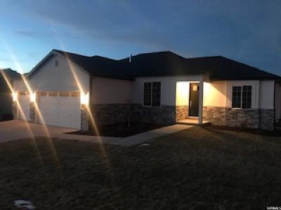 Salem Single Family Home For Sale: 885 E 180 N