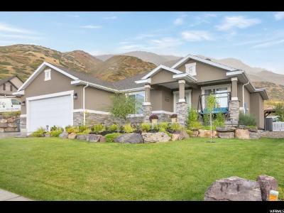 Santaquin Single Family Home For Sale: 1192 E 300 S
