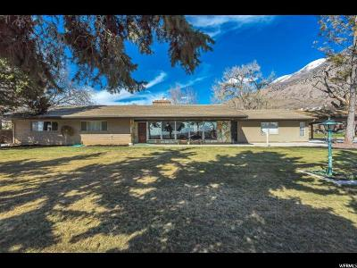Pleasant Grove Single Family Home For Sale: 338 W 2600 N