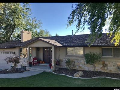 Sandy Single Family Home For Sale: 8492 S Mesa Dr