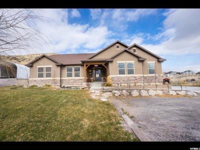 Eagle Mountain Single Family Home For Sale: 2603 E Patriot Dr N