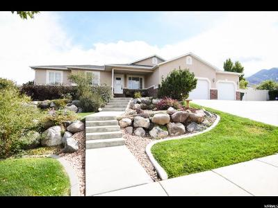 Tooele Single Family Home For Sale: 157 S Val Vista Dr E