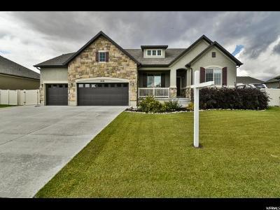 West Jordan Single Family Home For Sale: 8518 S Crowsnest Dr W #267
