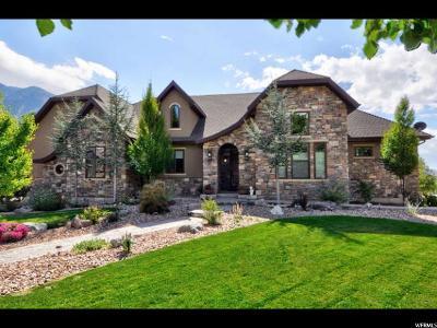 Sandy Single Family Home For Sale: 9 Apple Hill Cir