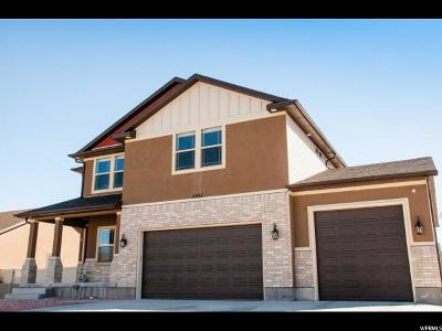 West Valley City Single Family Home For Sale: 5683 Far Vista Dr S