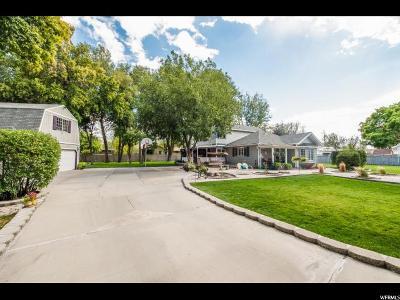 Sandy Single Family Home For Sale: 8253 S 300 E