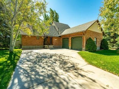 Mountain Green Single Family Home For Sale: 4216 Iris Ave