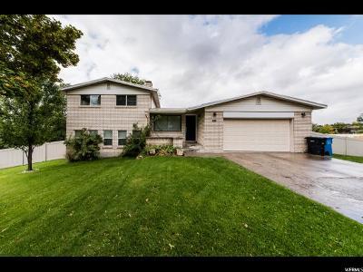 Smithfield Single Family Home For Sale: 395 S 700 E