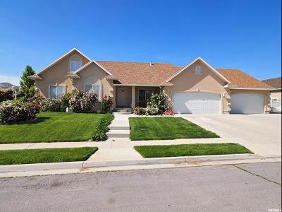 Lehi Single Family Home For Sale: 1363 E Damie Ln