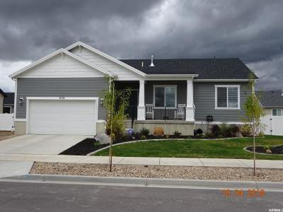 Provo Single Family Home For Sale: 658 W 1720 S