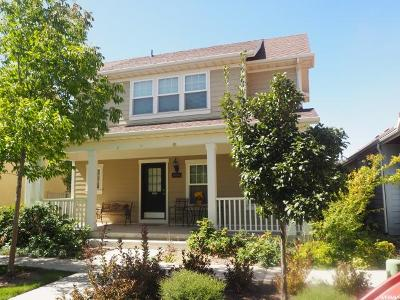 South Jordan Single Family Home For Sale: 11054 S Topview Rd W