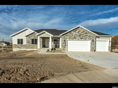 West Valley City Single Family Home For Sale: 6578 W Sunrise Rdg Ct S #110