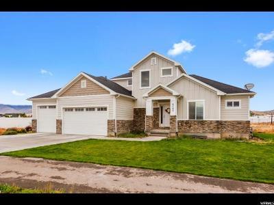 Eagle Mountain Single Family Home For Sale: 2107 E Sunnyvale Dr
