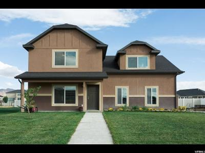 Springville Single Family Home For Sale: 1165 W 1500 S