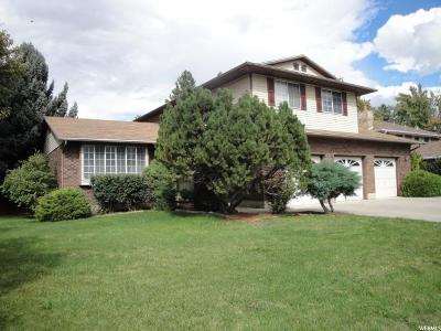 Sandy Single Family Home For Sale: 1881 E Brady Creek Dr S