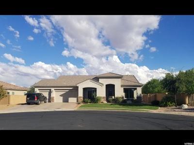 Single Family Home For Sale: 4991 S Azalea Cir