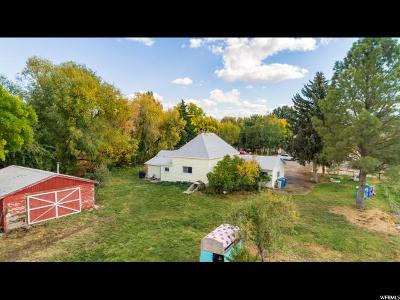 Cache County Single Family Home For Sale: 225 W 8800 S