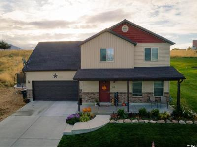 Hyrum Single Family Home For Sale: 50 N 500 W