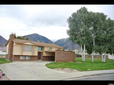 Salem Single Family Home For Sale: 795 S 240 E
