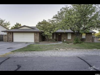 St. George Single Family Home For Sale: 3078 S Spruce Cir