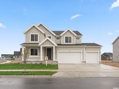 Mapleton Single Family Home For Sale: 684 Doubleday #30