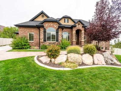 Davis County Single Family Home For Sale: 3022 E 25 S
