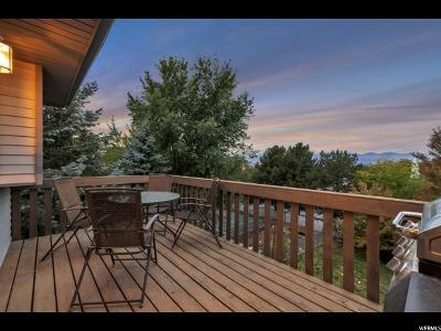 Sandy Single Family Home For Sale: 11760 S Dry Creek Rd E