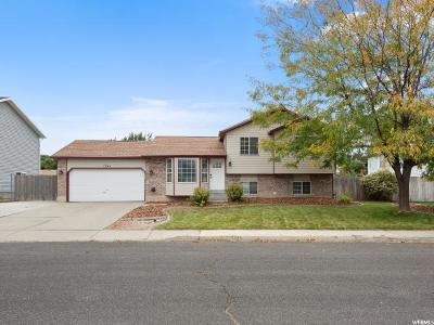 Lehi Single Family Home For Sale: 1245 W 1835 N