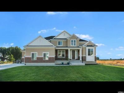 Mapleton Single Family Home For Sale: 1446 S 1030 W