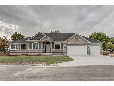 South Jordan Single Family Home For Sale: 1027 W River Pass Cv