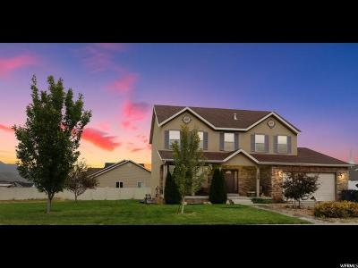 Santaquin Single Family Home For Sale: 398 W 800 N