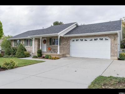Springville Single Family Home For Sale: 273 E 1150 N