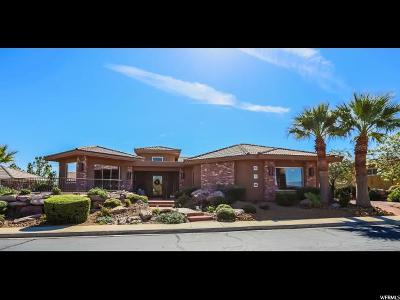St. George Single Family Home For Sale: 1635 S View Point Dr