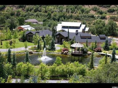 Springville Single Family Home For Sale: 3152 E Canyon Rd S