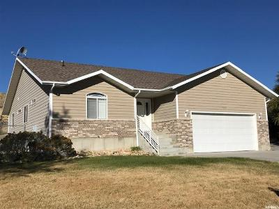 Tremonton Single Family Home For Sale: 11005 N Cullimore