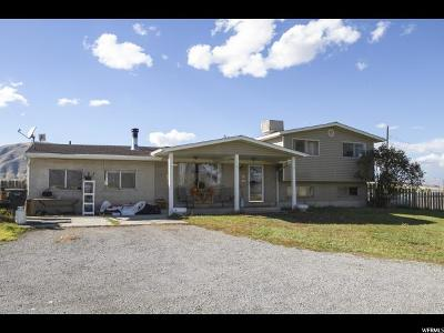 Payson Single Family Home For Sale: 8888 S 4500 W