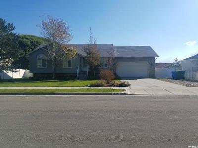 Riverton Single Family Home For Sale: 13049 S 2980 W