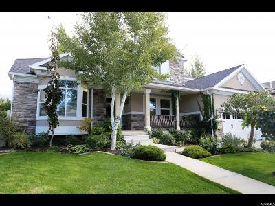 Orem, Lindon, Vineyard Single Family Home For Sale: 463 S 750 E