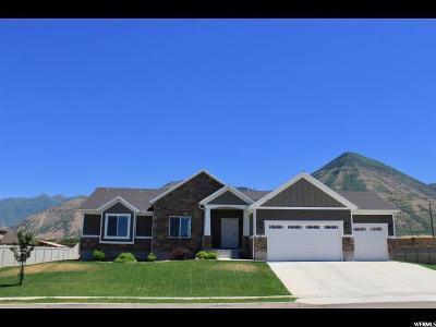 Salem Single Family Home For Sale: 15 S 900 E